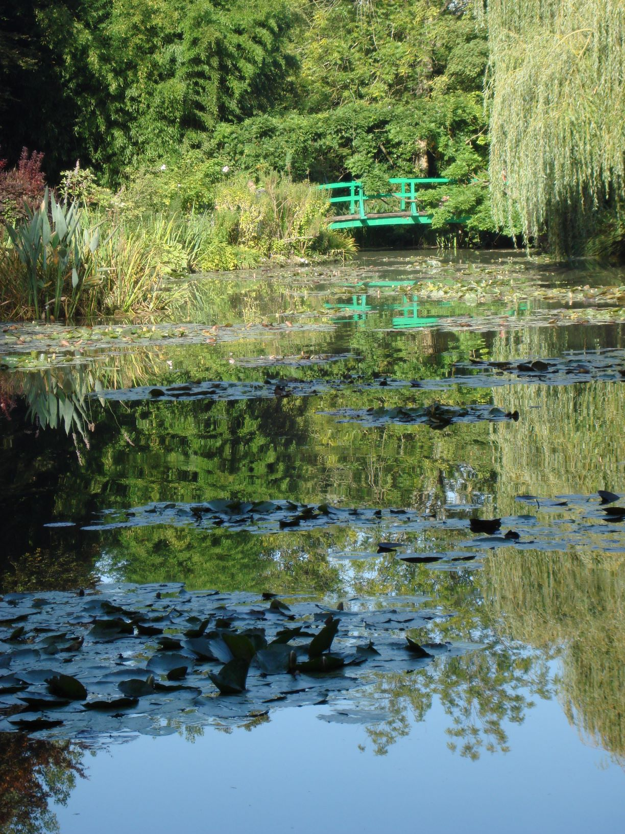 Monet's BridgeResizedForWebsite