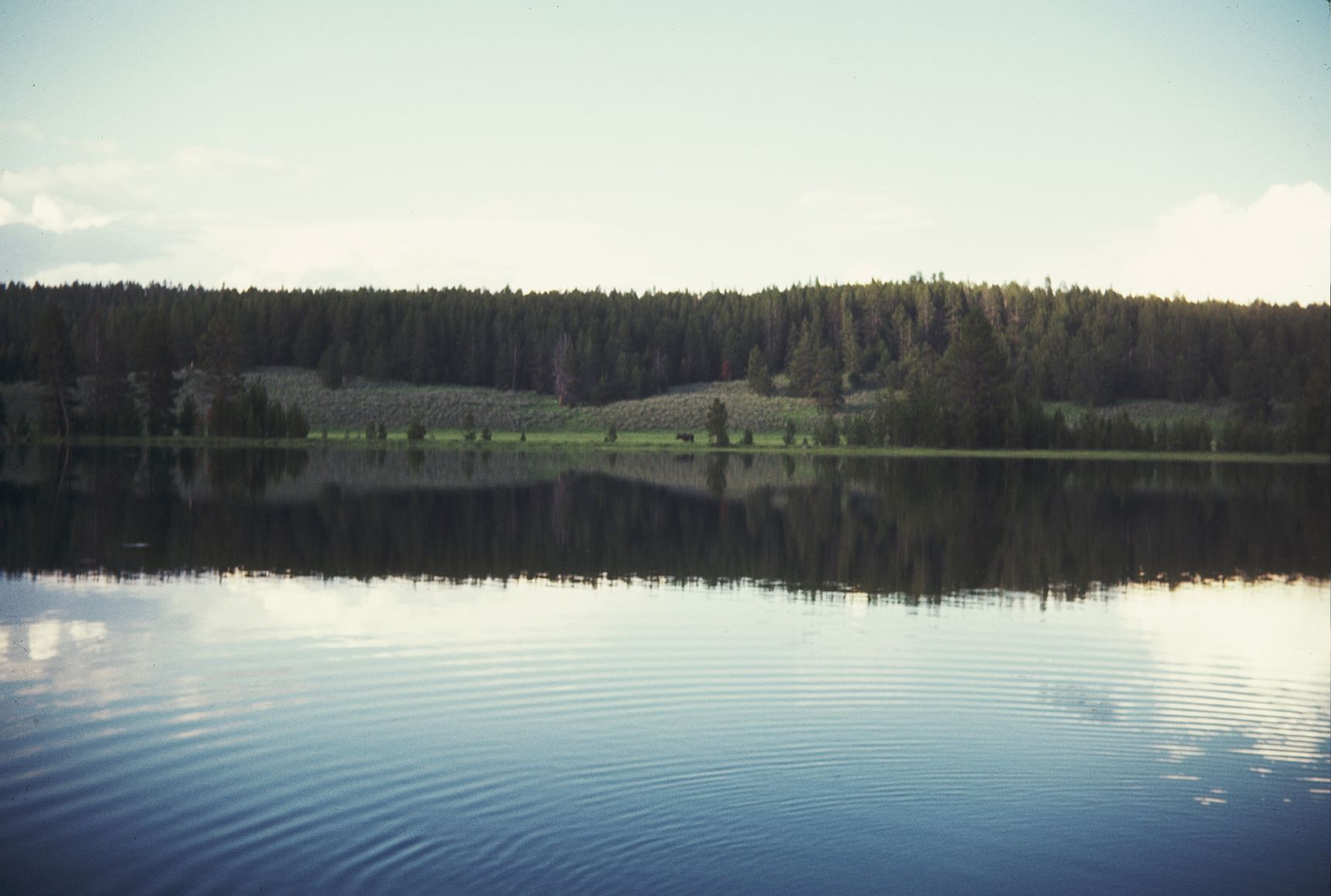 Yellowstone LakeResizedForWebsite