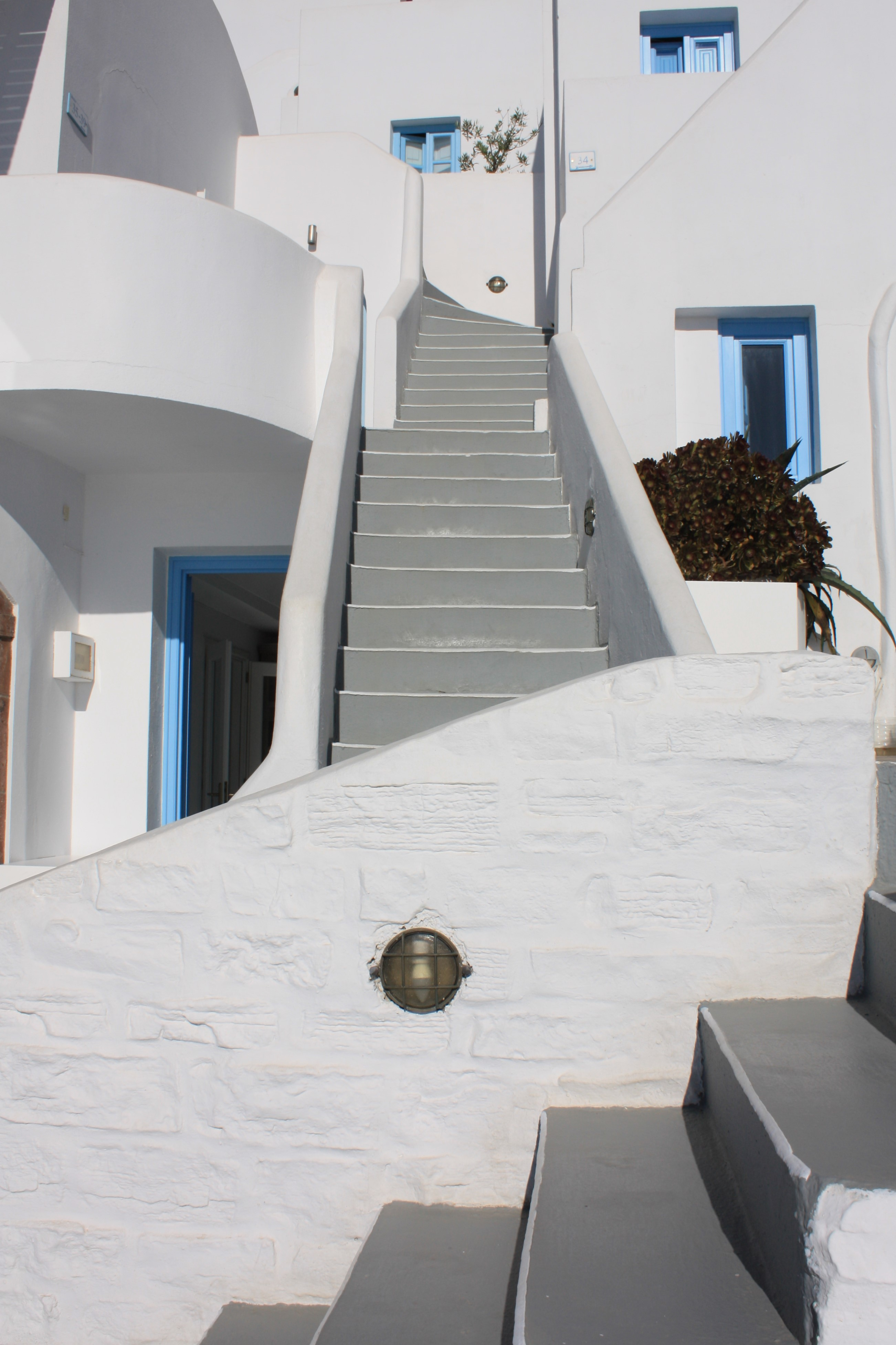 Blue and White, With Foliage, Santorini, Greece
